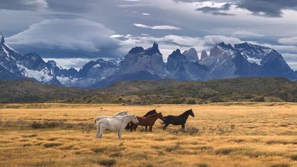 Travelogue: Self-drive safari in Patagonia | Abercrombie & Kent
