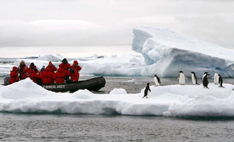 Researchers monitoring penguins, Antarctica