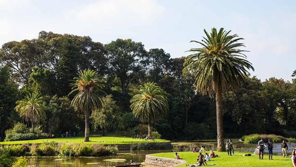 48 hours in Melbourne, A&K, Royal Botanic Gardens